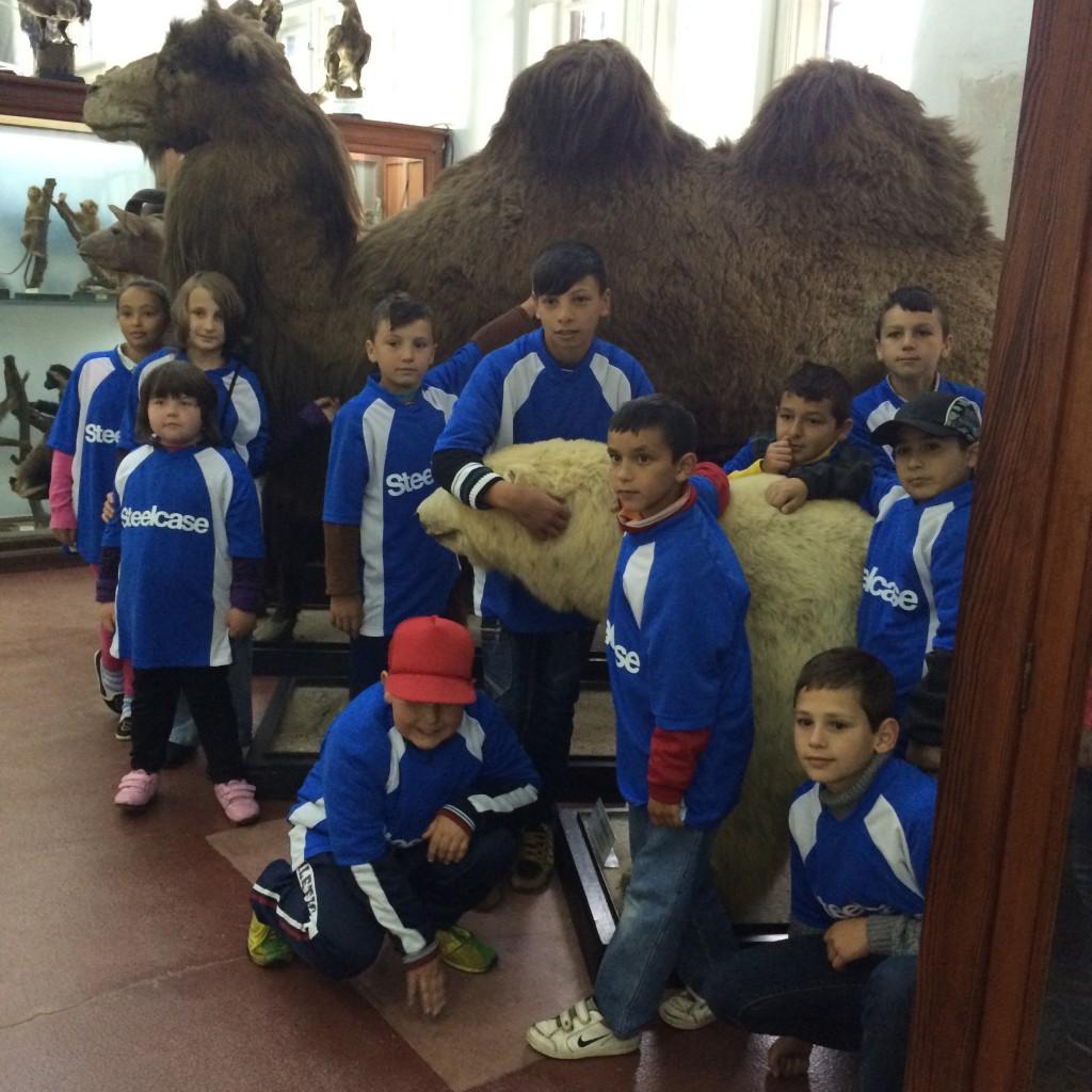 Muzeul zoologic bis